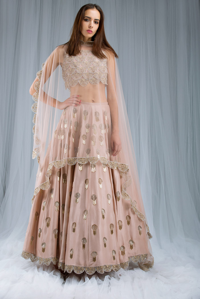 PS-ST0988 Blush Net and organza Choli with Silk Lehenga and Net Dupatta